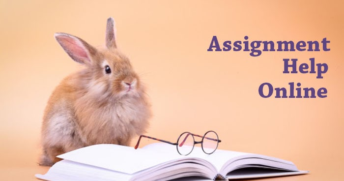Assignment Help Online: A New Way to complete your assignment